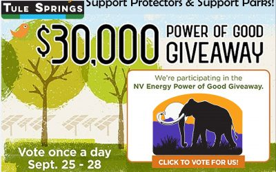 Vote for Protectors and Help Build a New Park!