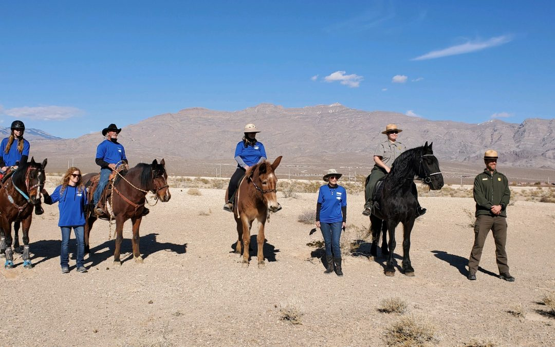 Unbridled Passion for our Park: Meet the Horse Patrol!